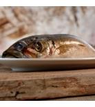 Barfgold Fisch Makrelen ganz 1kg