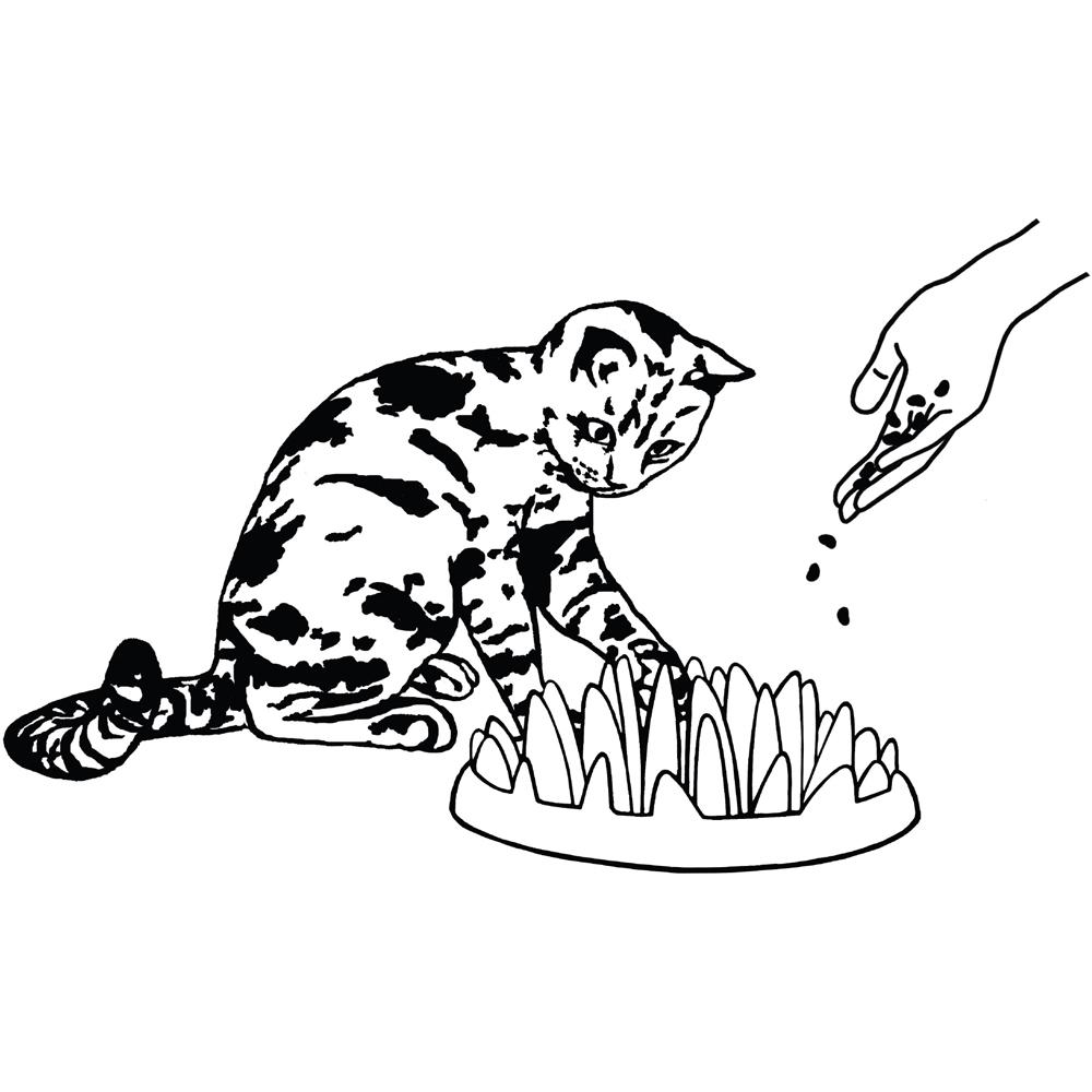 Northmate Catch Interaktiver Katzennapf