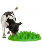 Northmate Green Interaktiver Hundenapf