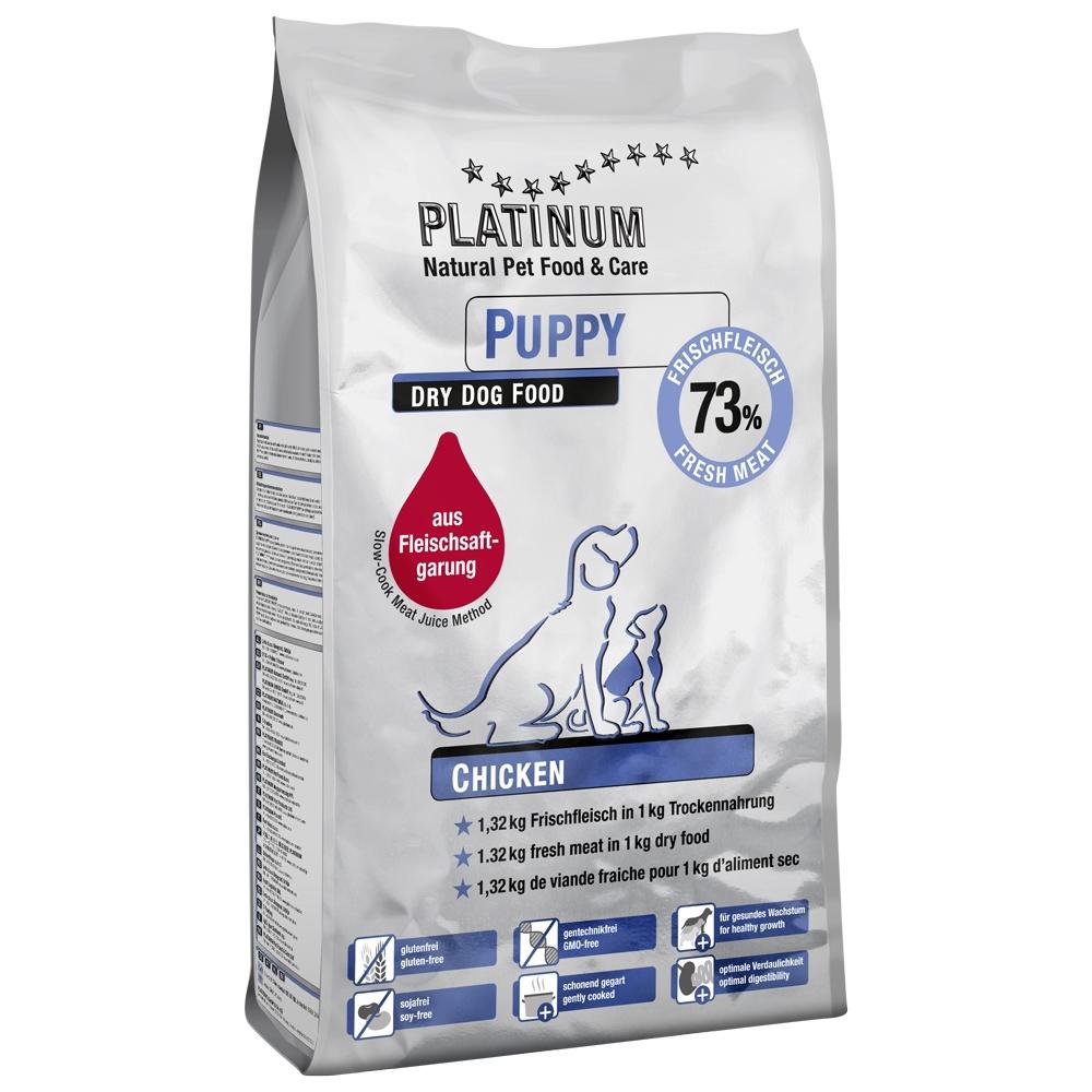 Platinum Puppy