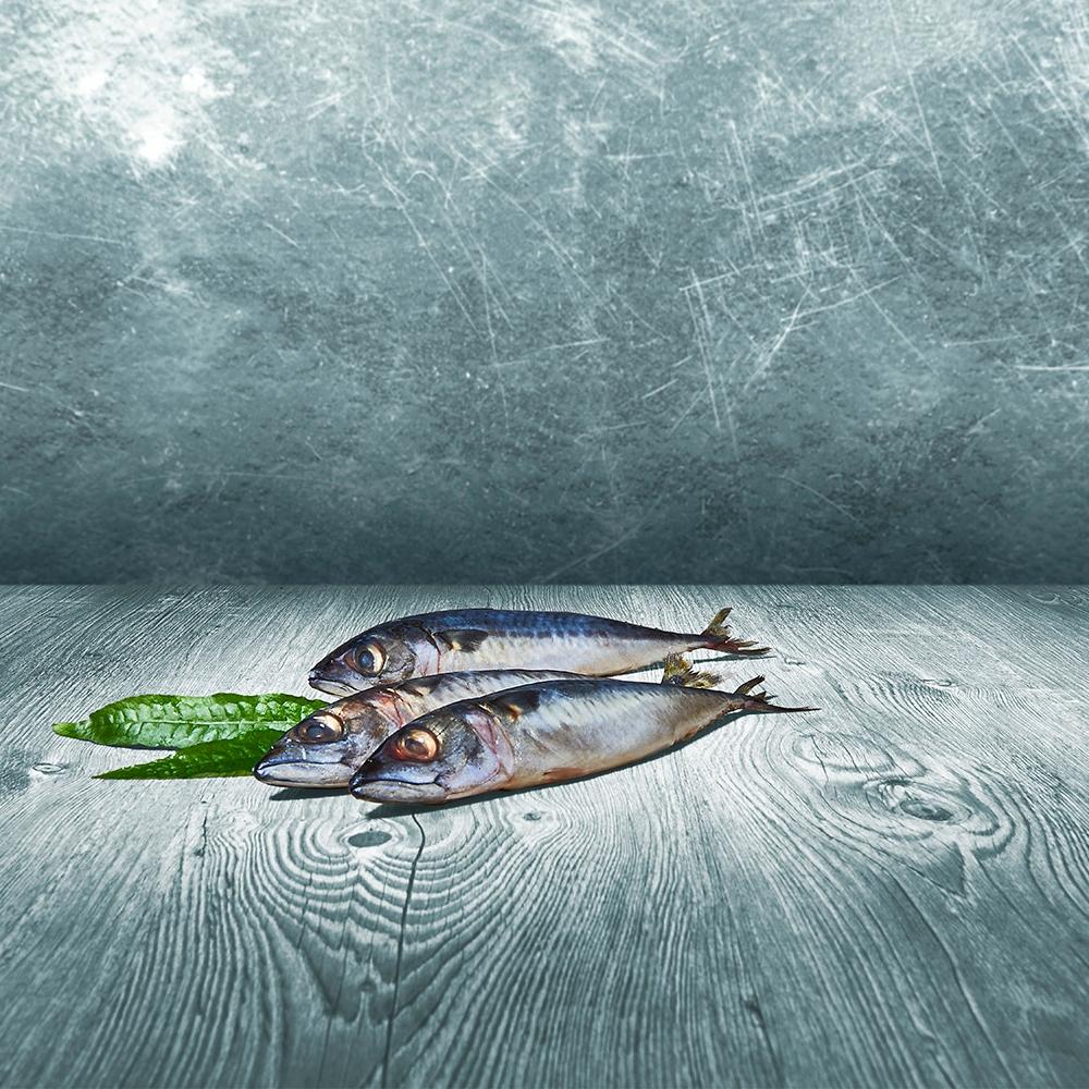 Barfer's Wellfood Choice Makrele im Ganzen 500g
