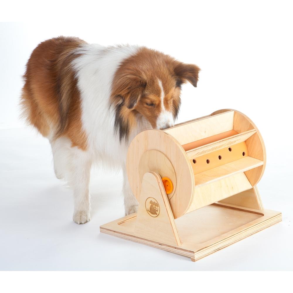 My Intelligent Pets Intelligenzspielzeug Wheel of Fortune