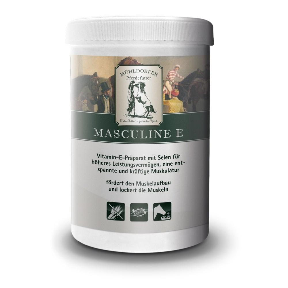 Mühldorfer Supplemente Masculine E