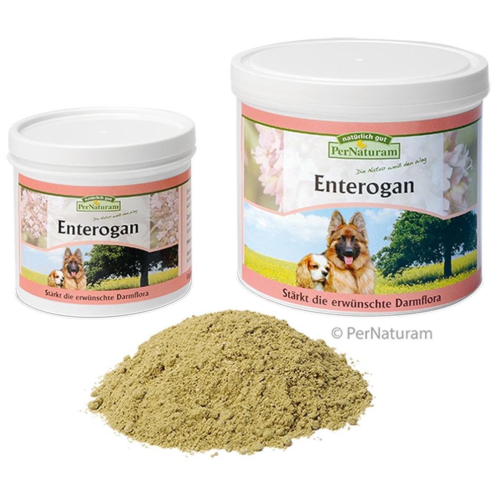 PerNaturam Enterogan